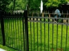 Aluminum Custom Fence, Gates, with Spears and Rings, Royal Oak
